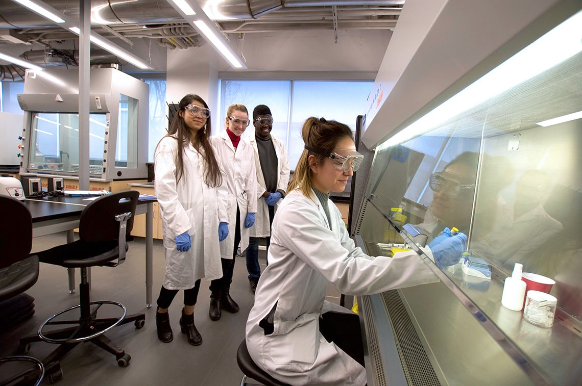 Photo of human biology class using CRISPR