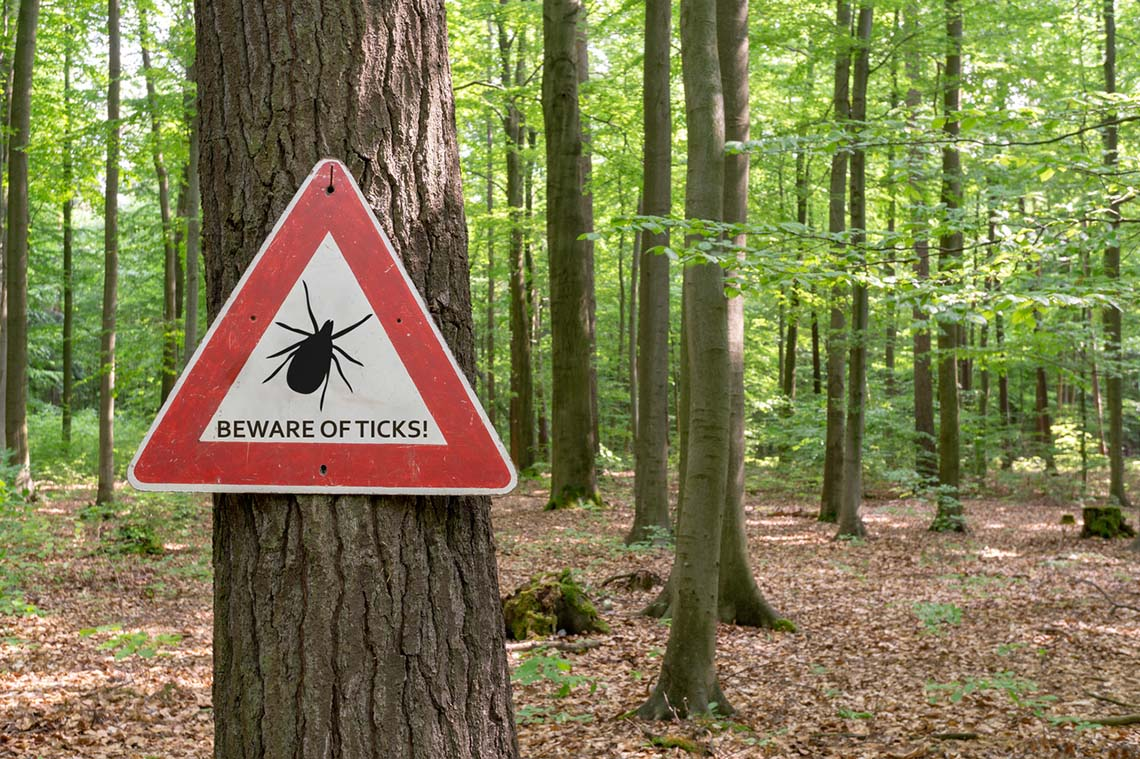 Photo of tick warning