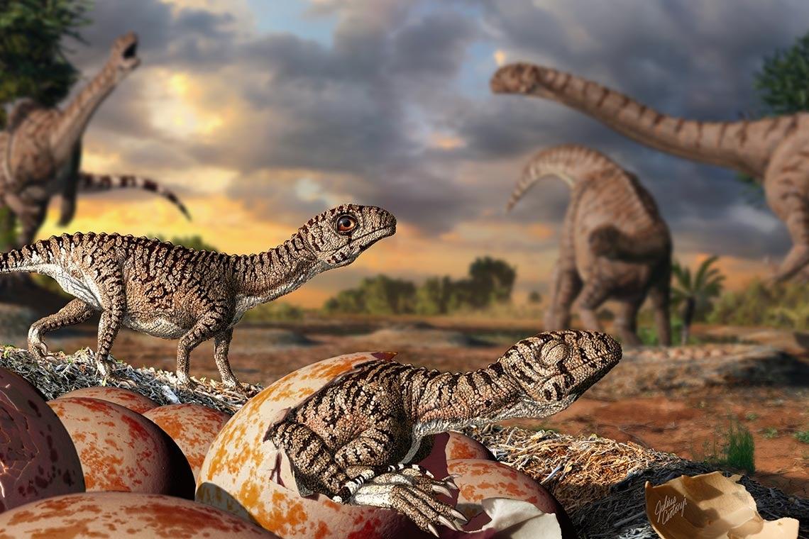 Illustration of dinosaurs