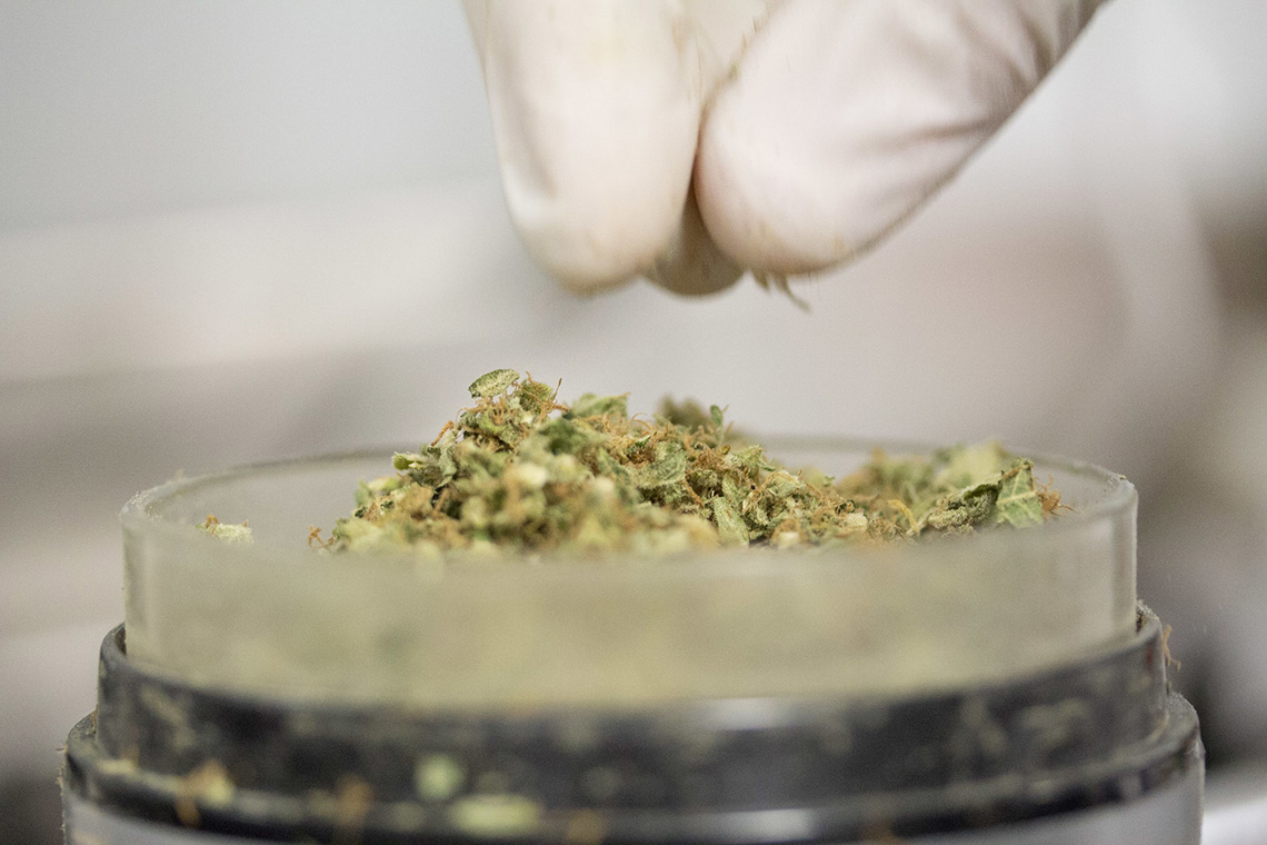 Photo of cannabis