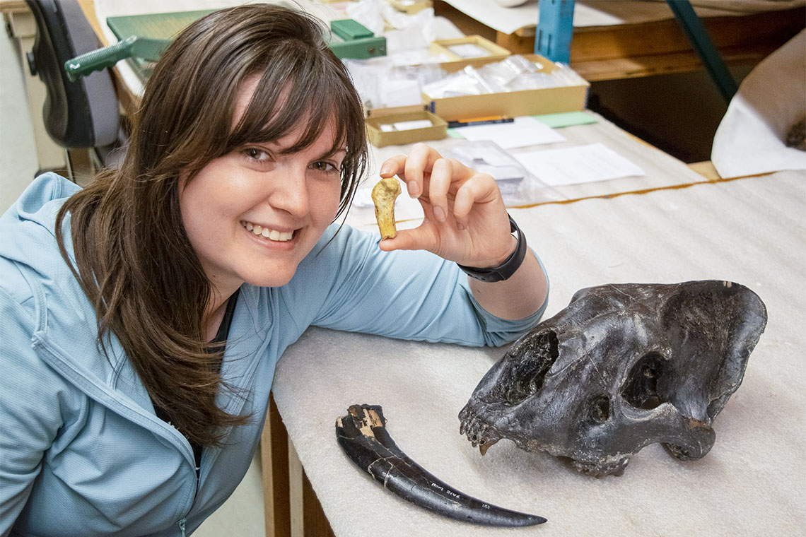 Ashley Reynolds holds the Smilodon fatalis metacarpal from Medicine Hat, Alberta