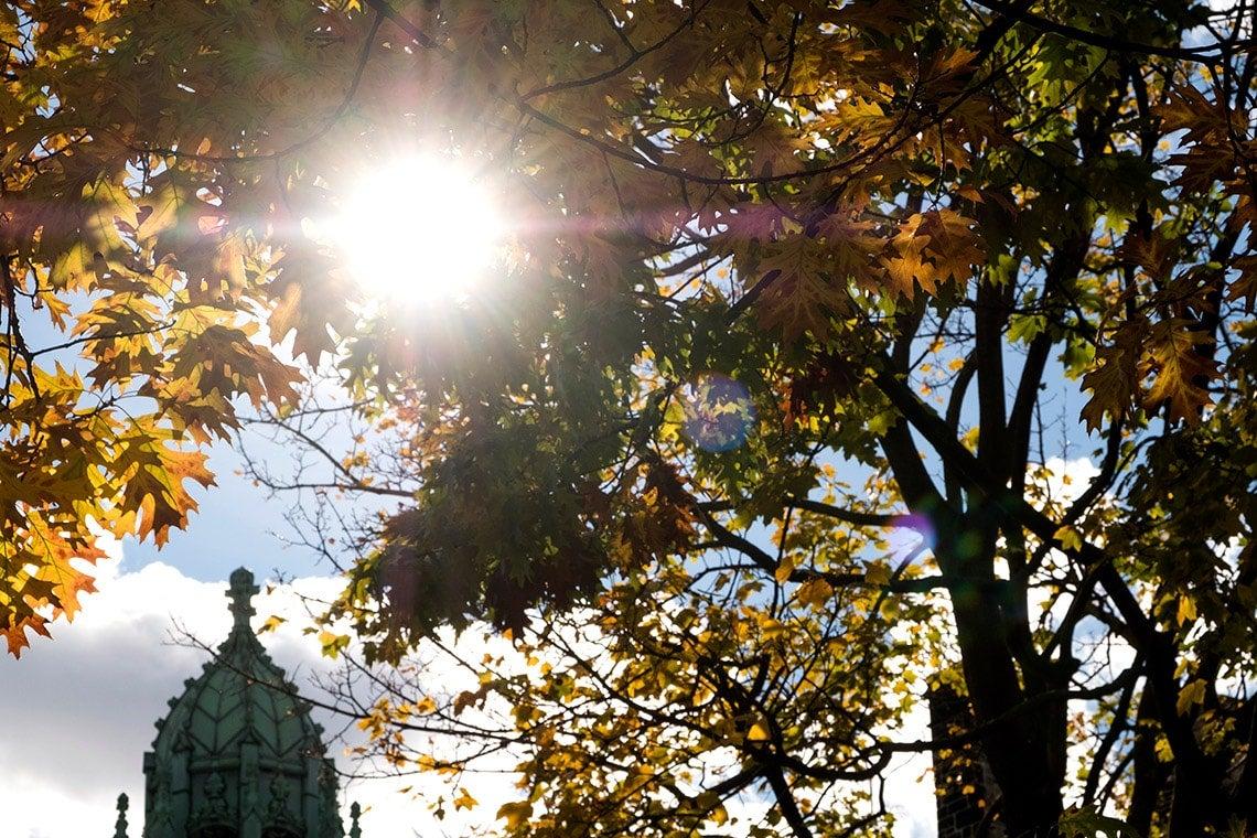 U of T campus in fall