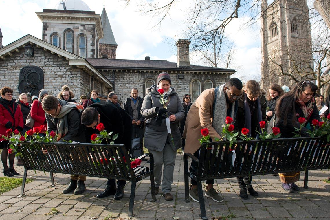 Photo of memorial roses