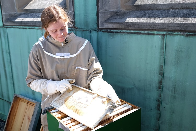 Laura Currin holds a hive frame