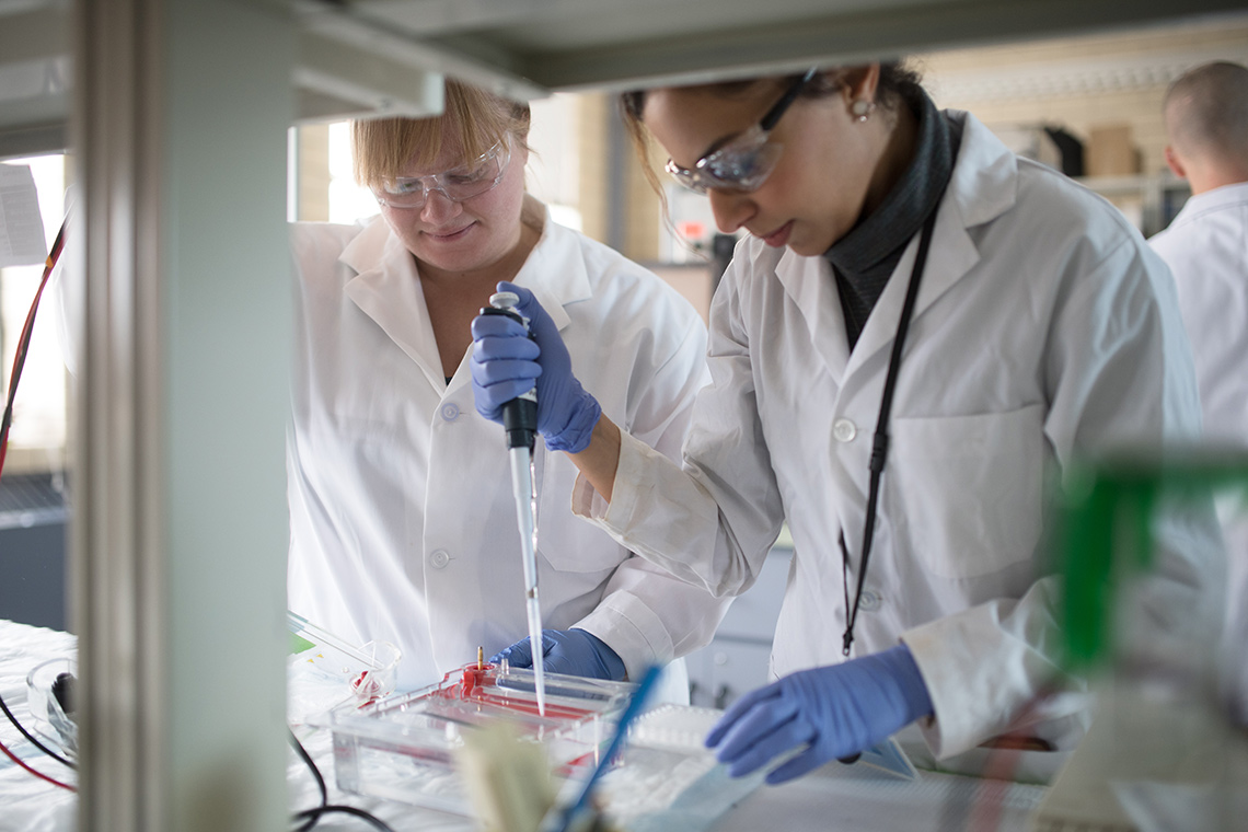 Photo of researchers in lab