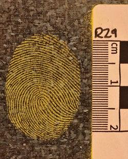 fingerprint under normal light