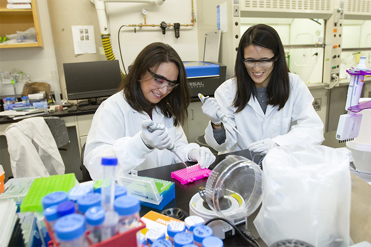 Mousavi and Chen sourcing enzymes in a lab