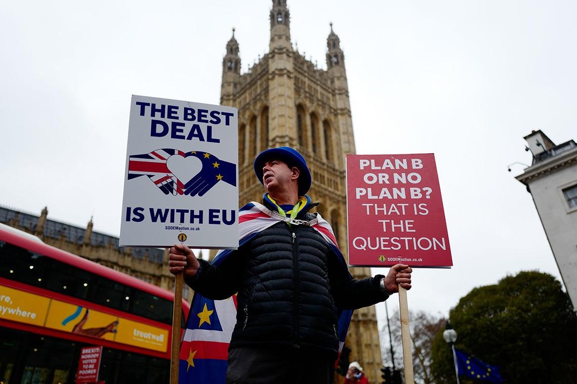 Anti-Brexit activist