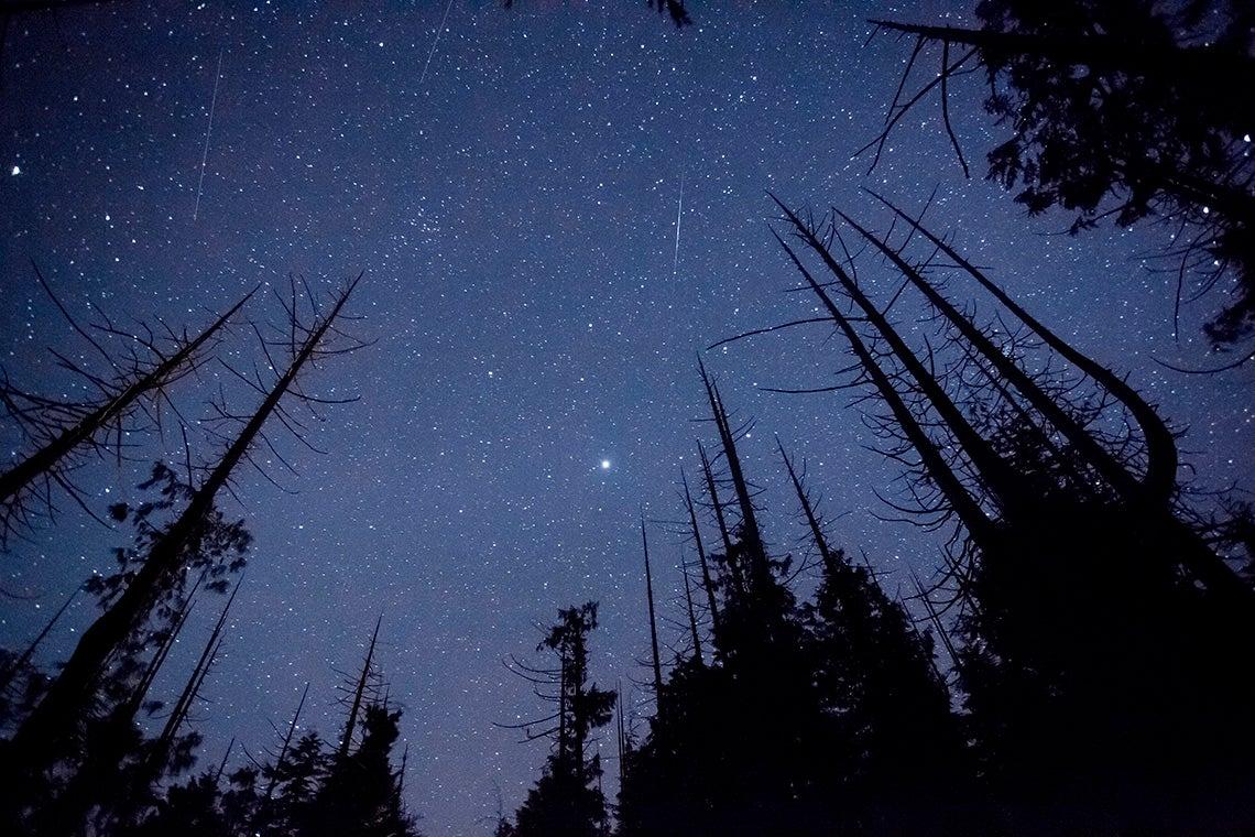 Starry night sky in Canada