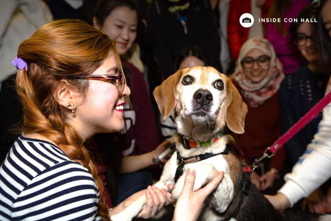 Photo of students with dog from demonstration