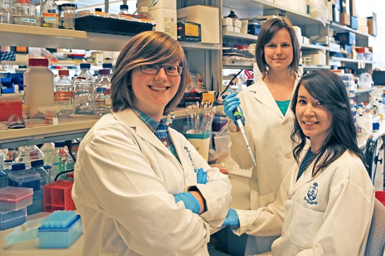 Three researchers (Elliott Donaghue, Malgosia Pakulska, Jaclyn Obermeyer) standing in their lab