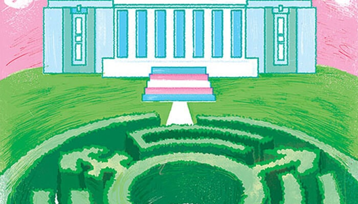 Transformation: The Evolution of Trans Rights in Canada and Abroad