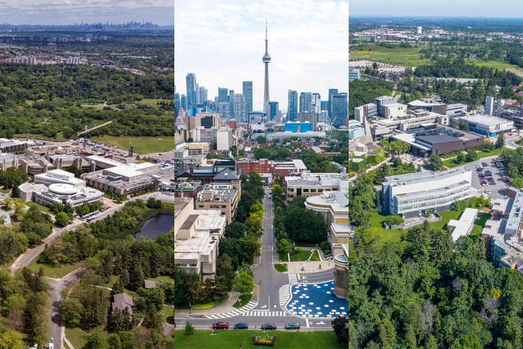composite aerial view of all three u of t campuses