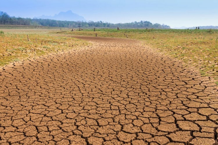 Photo of Thailand drought