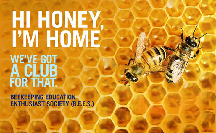 "Bees on a honeycomb, with the text ""Hi honey, I'm home. We've got a club for that. Beekeeping Enthusiast Education Society (B.E.E.S.)"