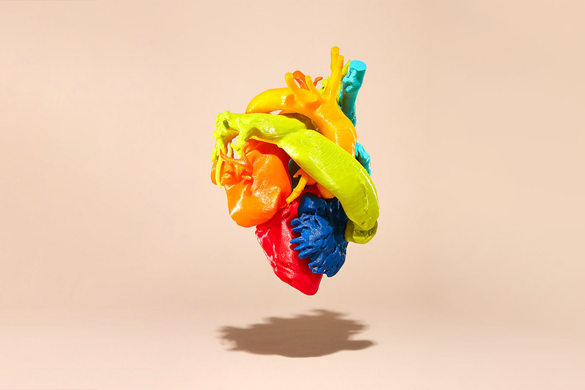 A 3D printed model of a heart