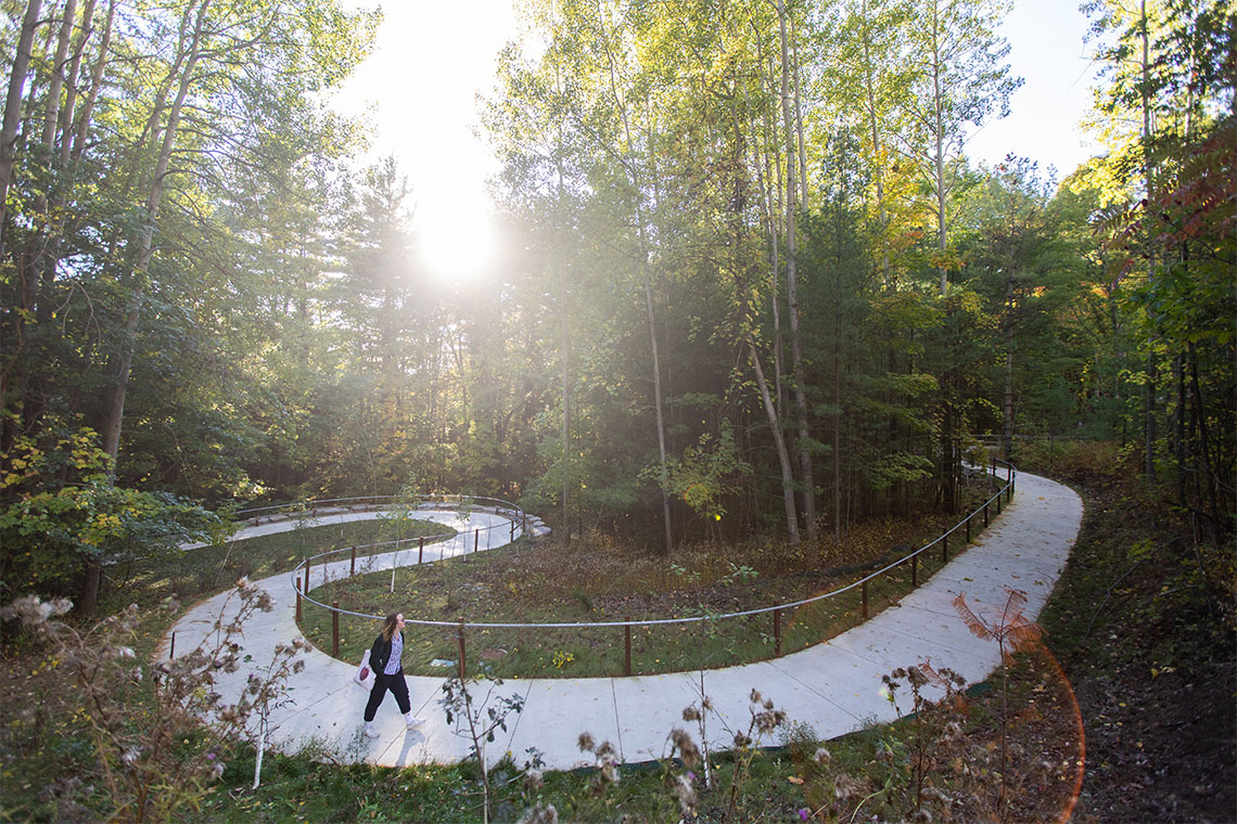 The Land Valley trail at the university of toronto scarborough campus is lit by sunlight