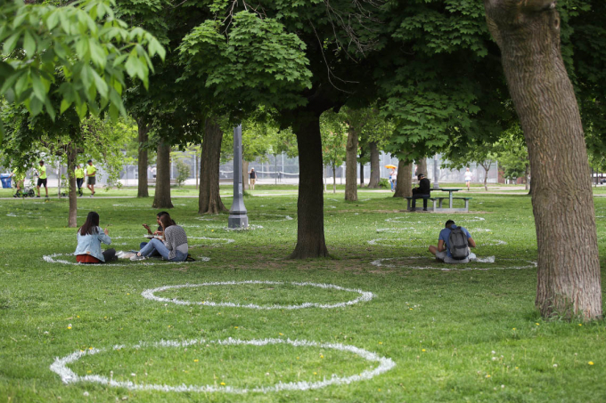 Park goers sit in circles painted on the grass in Toronto's Trinity Bellwoods Park
