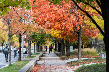 photo of students walking on campus under fall foliage